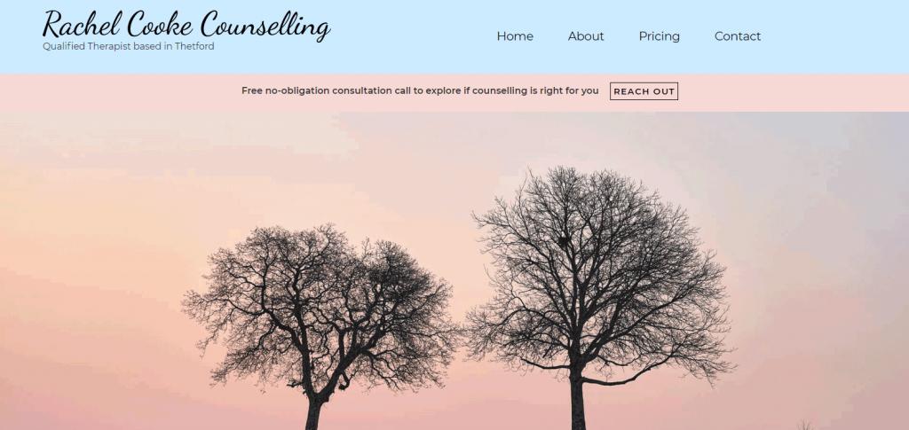 Rachel Cooke counselling